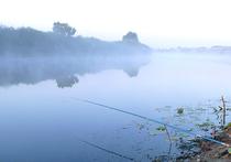 В Подмосковье рыбак случайно задавил коллегу на берегу реки