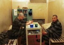 Холодильник в обмен на голос: как пройдут выборы в московских СИЗО