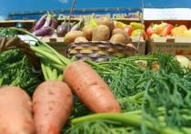 Кризис дал новый толчок развитию сельского хозяйства в Астраханской обалсти