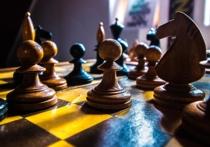 Игра в шахматы принесет бонусные баллы для егэ