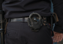 Задержан житель Подмосковья, который изнасиловал свою 75-летнюю мать