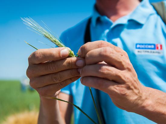 Министерство сельского хозяйства поблагодарило астраханских коллег