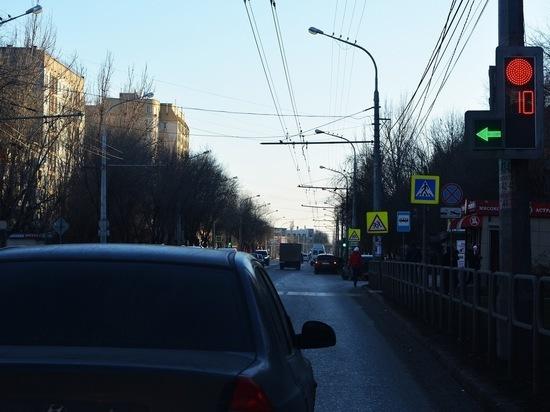Астраханцы раскрыли секрет отдыха грачей на дорогах
